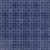 Apple Crisp- Navy Dots Paper