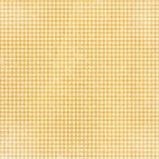 Apple Crisp- Orange Gingham Paper