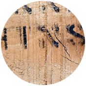 Apple Crisp- Wood Brad Disk 03