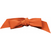 Day of Thanks- Orange Bow