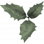 New day- Leaf Cluster