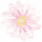 All the Princesses- Painted Pink Flower 01