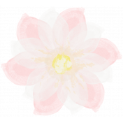 All the Princesses- Painted Pink Flower 03