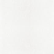 All The Princesses- White Paper