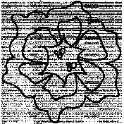 Flower Doodle Template 077