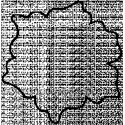 Flower Doodle Template 084