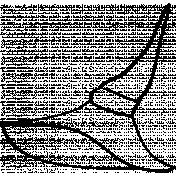 Hat Doodle Template 02