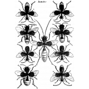 Insect Stamp Template 003