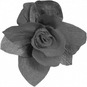 Paper Flower Template 06