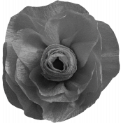 Paper Flower Template 07