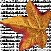 Fall Into Autumn- Silk Leaf