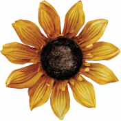 Fall Into Autumn- Sunflower