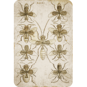 Chills & Thrills Bee Playing Card