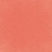 Fall Into Autumn- Light Orange Embossed Paper