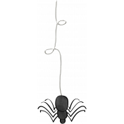 Chills & Thrills- Mini Spider Doodle
