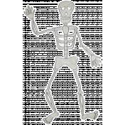 Chills & Thrills- Skeleton Doodle