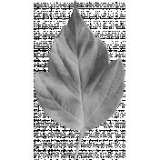 Leaf Template 012