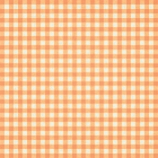 Our House- Orange Gingham Paper