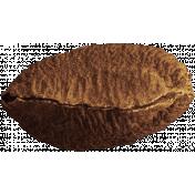 The Nutcracker- Brazil Nut