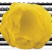 The Nutcracker- Yellow Sheer Flower