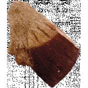 The Nutcracker- Macadamia Nut 4
