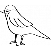 Bird Doodle Template