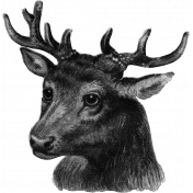 Deer Ephemera Template 01