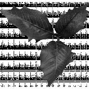 Leaf Cluster Template 03
