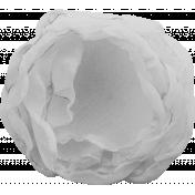 Sheer Flower Template 003