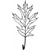 Maple Leaf Stamp Template