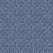 Rustic Charm- Blue Lace Paper 2