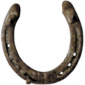 Rustic Charm- Horseshoe