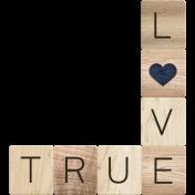 Rustic Charm- True Love Word Art