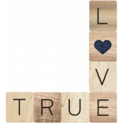Rustic Charm- True Love Word Art