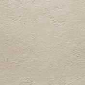 Rustic Charm- Cream Textured Paper