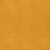 Look, A Book!- Solid Dark Orange Paper