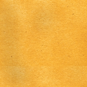 Look, A Book!- Solid Light Orange Paper