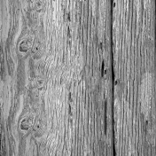 Wood Texture 017