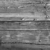 Wood Texture 018