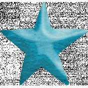 Look, A Book!- Blue Star
