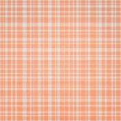 Good Day- Orange Plaid Paper
