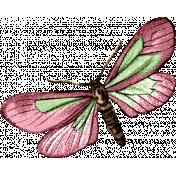 Fresh Start- Butterfly