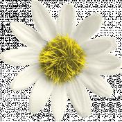 Reflections of Strength Mini Kit- Sunflower