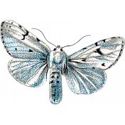 Reflections of Strength Mini Kit- Blue Butterfly