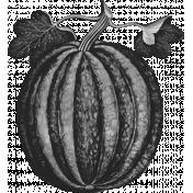 Pumpkin Template 001