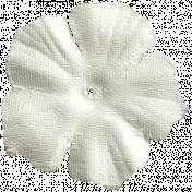 Summer Splash- Cream Flower