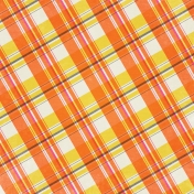 Summer Splash- Plaid Paper