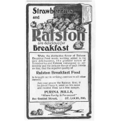 Vintage Advertisement Template 005