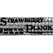Vintage Advertisement Stamp 011