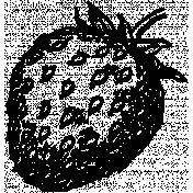 Strawberry Illustration Stamp 012